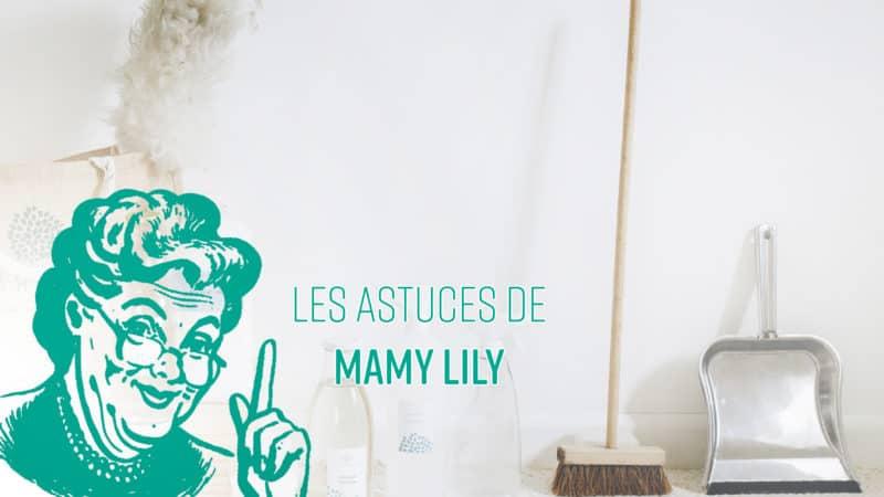 astuces de mamylily